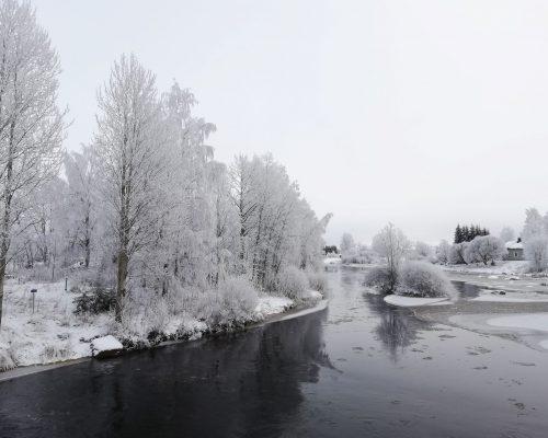 winter scene from neibourghood